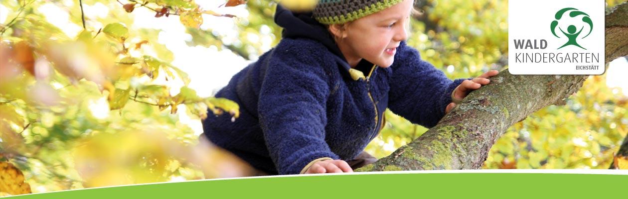 Waldkindergarten und Waldtagespflege Eichstätt